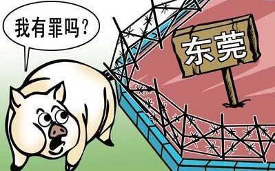 生猪禁养雷厉风行,2017年猪价或依旧居高不下!