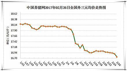 2月26日猪评:养猪户大可放心,此轮猪价小跌有底线