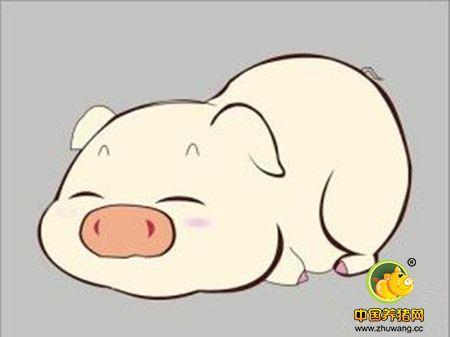 猪空白表情包素材