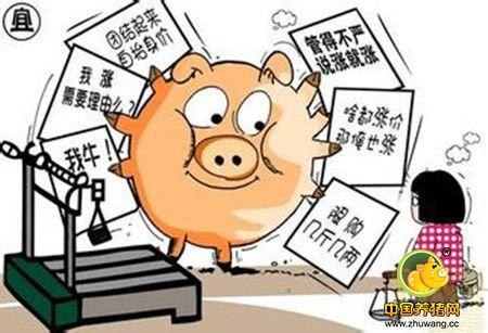 4大养猪户担心的问题,最后一个就算资深养殖户都怕