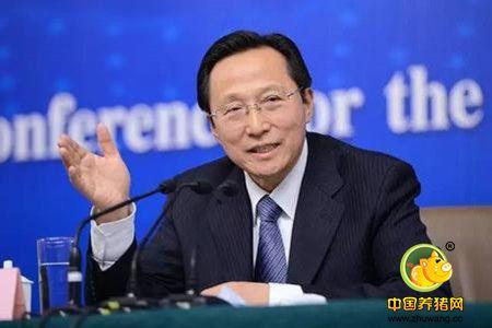 韩长赋:中国一年生猪的饲养量大数接近12亿头