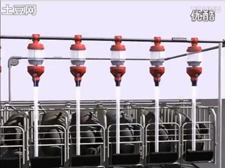 养猪自动料线设备工作原理
