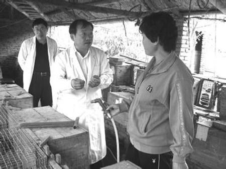 沙湾县驻村工作队为养殖户免费发放饲料