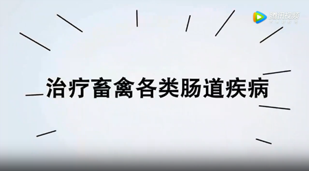 丰强生泰——肠道健康领跑者