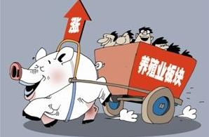 后期猪价利空消息减少,4月份请理性期待