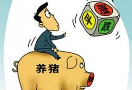 供需双方各持一词 国内生猪价格涨跌两难