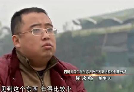 农户花费1000万盖楼养藏香猪,五年了好多村民不知道干什么的