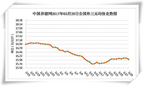 3月29日猪评:猪价涨跌两难,养殖户应适时适重出栏生猪
