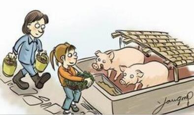 如何成为优秀的猪场管理者