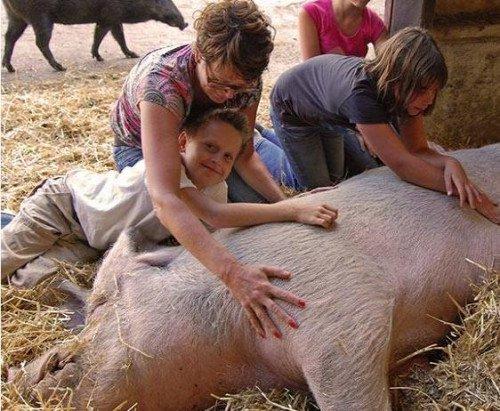 引起猪胀气死亡的原因和防治