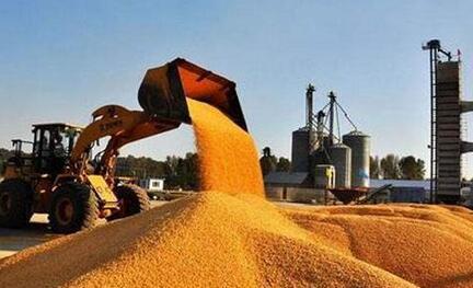 收购玉米获刑又被判无罪,内蒙古农民申请国家赔偿38万