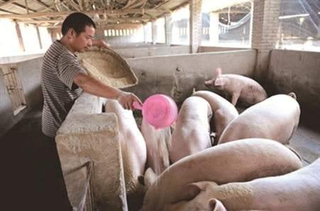 季节转变,猪场谨防腹泻