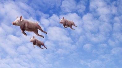 猪在不同饲养阶段的疫病汇总及防治
