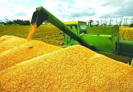 注意了!大豆市场大爆发时代即将来临!
