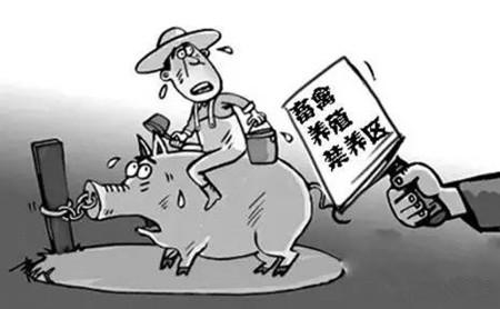 禁养区养殖场拆迁有补偿 但这些养殖户可能领不到!