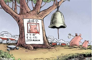 越南猪价暴跌,政府帮忙解困,但猪肉除了出口,走私也很溜