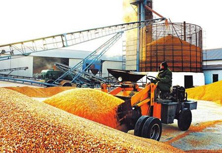 2017年玉米上涨仍将在秋收之际