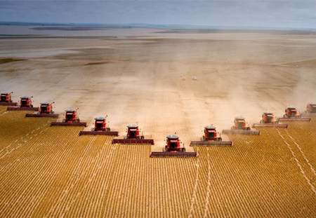 豆粕市场何时才能拔云见日?