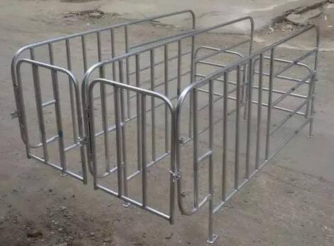 猪场限位栏安装的几种方法(附图)