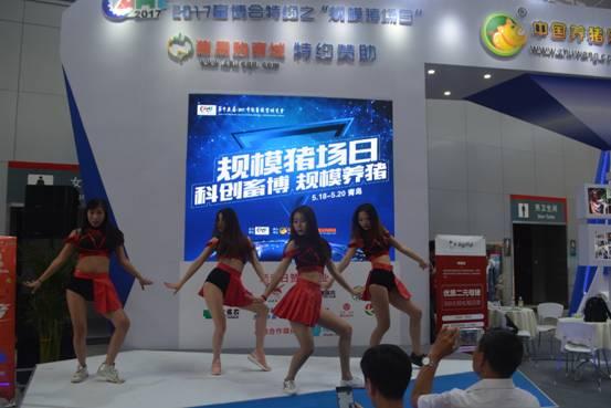 直播养猪:第十五届(2017)中国畜牧业博览会在青岛隆重拉开帷幕