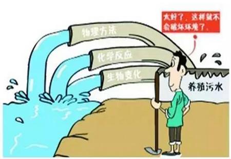 """粪污废水转化为有机肥 养猪也能""""零排放"""""""