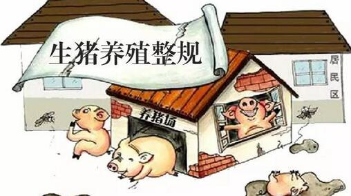 安徽霍邱开展依法取缔无证生猪屠宰场点工作
