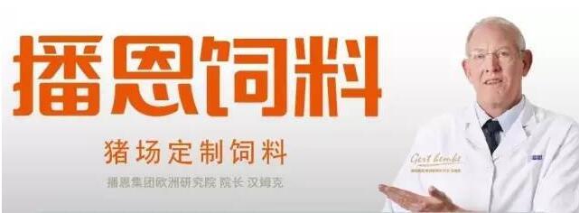 广州种猪拍卖会火热多年,不容错过!