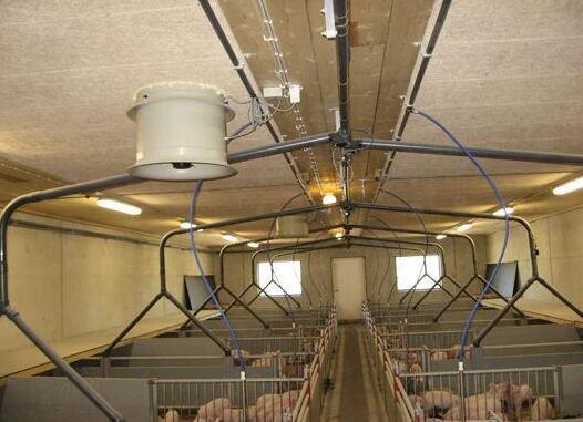 养猪业将要发生巨变!液态饲喂系统要当老大!