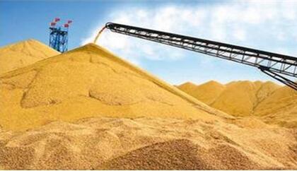 玉米市场将在本月再度调整,价格将先落后涨?!