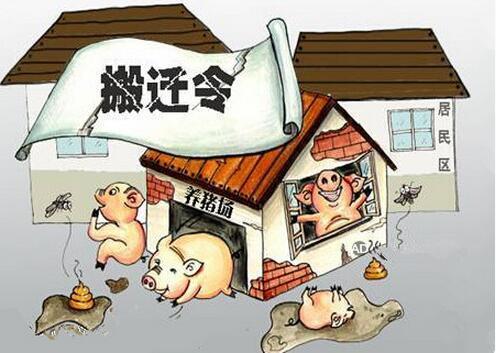 注意了!拆了你的养猪场,就得给你补偿