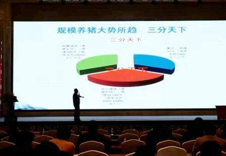 养猪行情:中国养猪业未来发展趋势——李俊柱