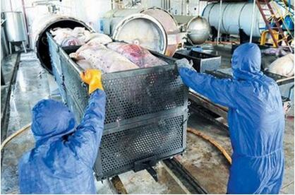 年内全省建30个以上病死畜禽无害化处理中心