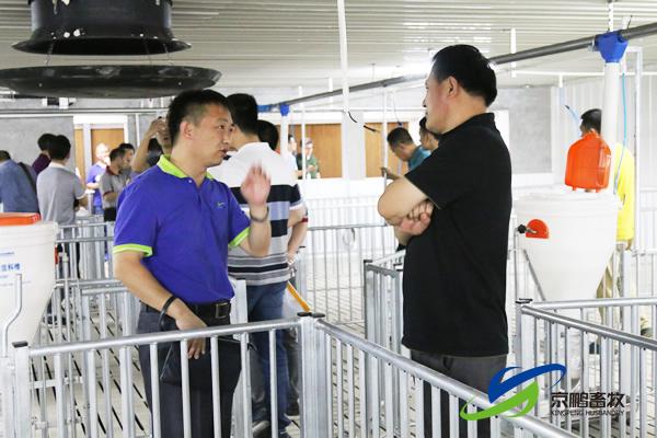 京鹏环宇畜牧客户走进北欧农庄及丹育钱柜娱乐777官网场