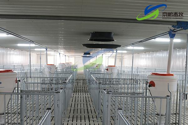 京鹏环宇畜牧客户走进北欧农庄及丹育种猪场
