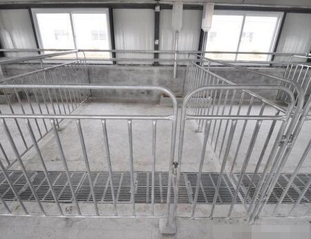 养猪:建设一个现代化养殖场须购哪些设备?想当老板怎能不看!