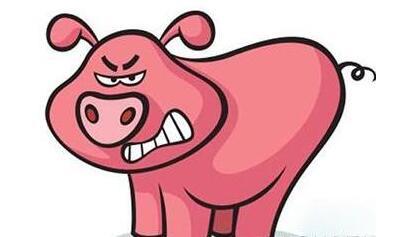 转眼6月过去,7月的猪肉价格,这么暴力?