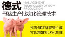 德式母猪生产批次化管理技术