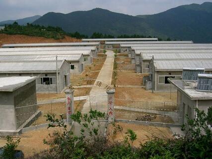 猪舍建筑和布局都需要注意哪些问题?建设现代化猪场必知五点知识