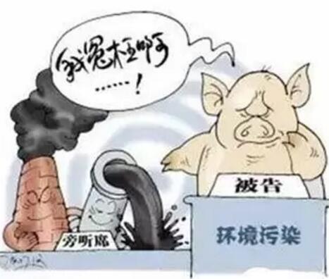 分析猪场与环保之间矛盾加剧原因