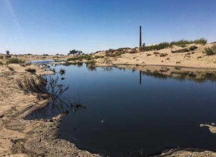 污水、粪便直排,恶臭难散,养猪业污染内蒙古海金山牧场