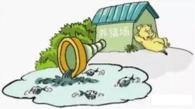 环保养猪有哪些可行的小窍门 哪些窍门可以降低养猪污染