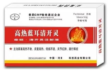 温度持续升高,困扰猪场的另一高死亡率疾病——高热流感来袭
