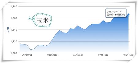 """7月17日猪评:高温酷暑限制大猪出栏 猪价难破""""14元魔咒"""""""