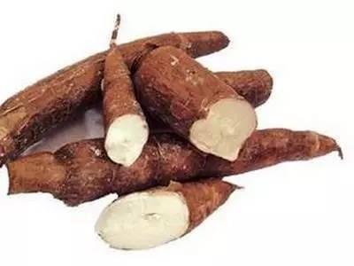 木薯+山药,养猪省钱良方!