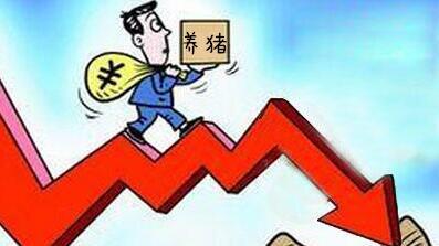最新数据:上半年生猪出栏仅增加0.7%,猪价却跌了30%!