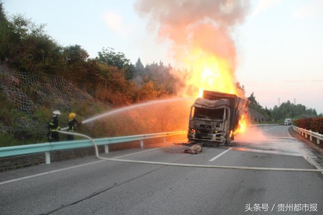大货车失火,九十六头生猪葬身火海,都是它惹的祸……
