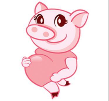 母猪离预产期还20多天死活不吃食?这些方法可以一试