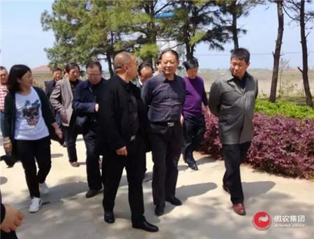 湖北省畜牧兽医局局长盖卫星一行莅临湖北三匹调研指导工作