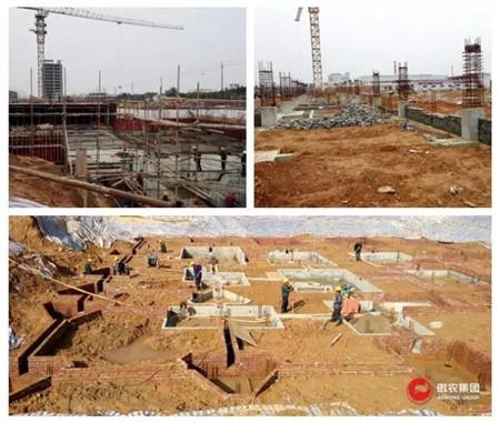傲农集团华中生物科技园工程进展顺利