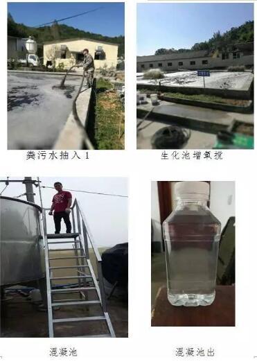 粪污处理竟如此简单,浙江瑞安引进新工艺,排放达标仅需30万